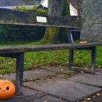 Pumpkin under a bench
